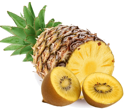Pineapple and yellow kiwi